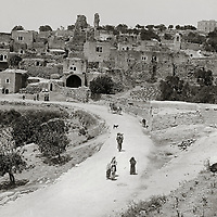 Mount of Olives BW