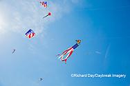 63495-02709 Kites flying at Flagler Beach Flagler Beach, FL