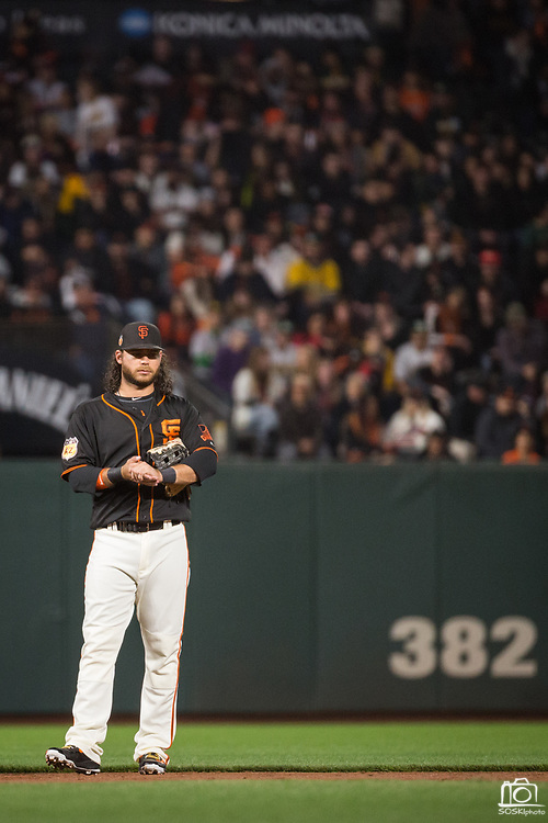 San Francisco Giants shortstop Brandon Crawford (35) watches gameplay from the infield against the Oakland Athletics at AT&T Park in San Francisco, California, on March 30, 2017. (Stan Olszewski/Special to S.F. Examiner)