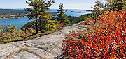 Hike Acadia Mountain Trail (with loop option via Mt. Sauveur 2.5-4.5 mi RT/700-1300 ft gain) for good views of Somes Sound and typically peak fall colors in the second week of October, in Acadia National Park, Bar Harbor, Mount Desert Island, Maine, USA. Hike granite peaks and enjoy Atlantic coastal scenery. Originally created as Lafayette National Park in 1919, the oldest National Park east of the Mississippi River, it was renamed Acadia in 1929. During the last glacial maximum 21,000 years ago, glaciers measuring up to 9,000 feet thick cut into granite ridges, sculpting the fjord-like Somes Sound. The panorama was stitched from 4 overlapping photos.