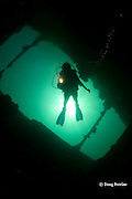 diver explores cargo hold on wreck of the El Capitan / USS Majaba, an American freighter of 90 m length, sunk in 1946 in Subic Bay, Philippines, lying on its side at a depth of 5-21 m; MR 379