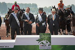 Team NED, IJsbrand Chardon, Koos De Ronde, Theo Timmerman - Driving Cones - Alltech FEI World Equestrian Games™ 2014 - Normandy, France.<br /> © Hippo Foto Team - Dirk Caremans<br /> 07/09/14