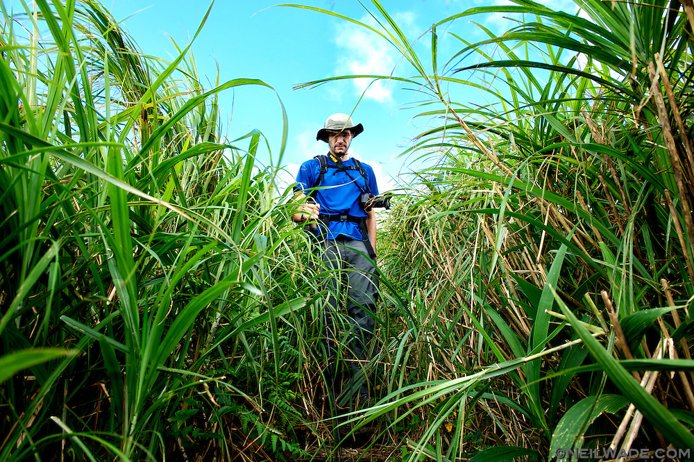 You might want to take a long sleeved shirt to protect your arms from the very tall silver grass.