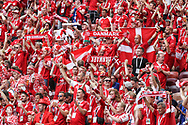 Fans of Denmark during the 2018 FIFA World Cup Russia, Group C football match between Denmark and France on June 26, 2018 at Luzhniki Stadium in Moscow, Russia - Photo Thiago Bernardes / FramePhoto / DPPI