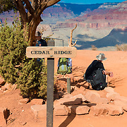 Cedar Ridge on South Kaibab Trail, Grand Canyon National Park