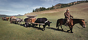 Modern Mongolia: a nomadic Mongolian family moves campment, carrying their satellite dish and their yurt on a cart pulled by yaks.