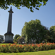 16.08.2016    <br /> Limerick City and County Council, Flowers, Peoples Park, Limerick City. Picture: Alan Place