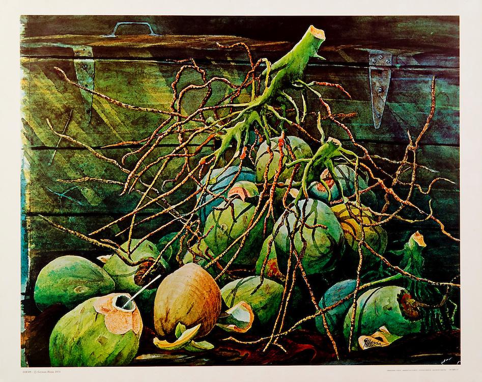 """Cat.#29 - Print of a watercolor painting of a bunch of coconuts, a typical  scene in the Tropics. Printed in Italy on heavy weight, smooth stock.<br /> Paper size is 21 3/4 x 17 5/8"""". Image size is approximately 20 x 16"""" <br /> Cat.#29 - Impresión de una pintura en acuarela de un racimo de cocos, una escena típica de paises tropicales. Impreso en Italia en papel pesado y liso.<br /> Tamaño del papel es 21 3/4 x 17 5/8"""". Tamaño de la imagen es aproximadamente 20 x 16"""""""