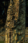 Copàn: Stelae of Great Plaza portraying the rulers of Copàn.