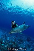 Spot, a wild, lone, sociable bottlenose dolphin, Tursiops truncatus, with pal Jason Belport, Cayman Bac, Cayman Islands ( Caribbean Sea ) MR 281