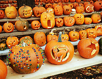 Jack O Lantern Group, Keene Pumpkin Festival Group.