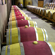 Wine barrels at the cellar door at Cloudy Bay Vineyard, Jackson Road, Marlborough, New Zealand..The winery and vineyards are situated in the Wairau Valley in Marlborough at the northern end of New Zealand's South Island. This unique and cool wine region enjoys a maritime climate with the longest hours of sunshine of any place in New Zealand. Wairau Valley, Marlborough, New Zealand. 9th February 2011. Photo Tim Clayton