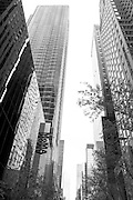 Cityscape in front of MOMA