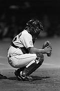1993 Miami Hurricanes Baseball.
