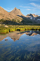 Nylon Peak reflected in pond near Lee Lake, Bridger Wilderness. Wind River Range, Wyoming