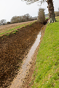 Recently cleared drainage ditch drain water from fields to River Deben, Sutton, Suffolk, England, UK