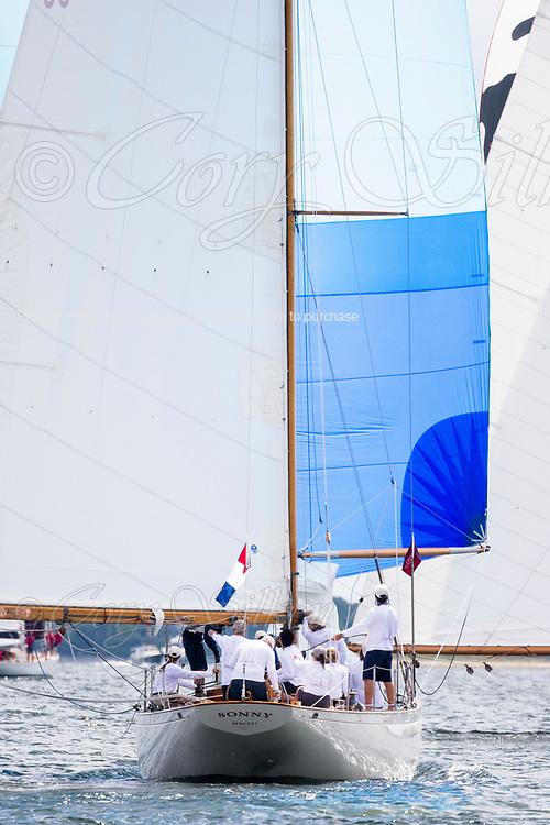 Sonny sailing in the Panerai Herreshoff Classic Yacht Regatta.