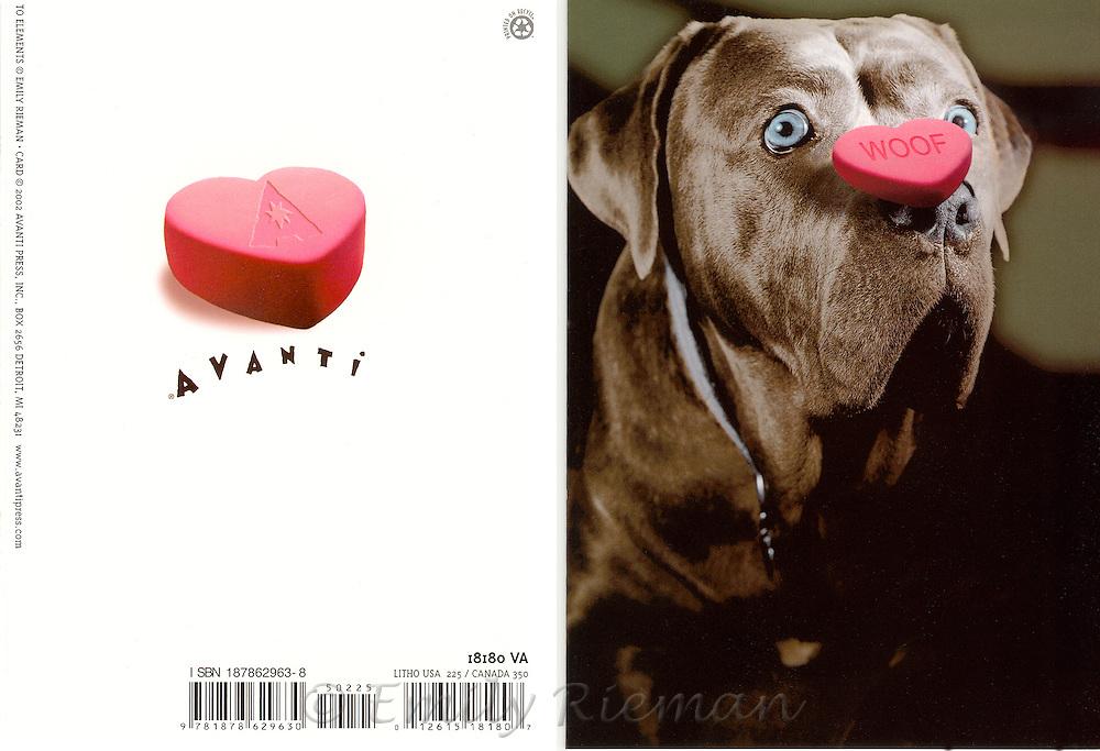 Valentine's Day greeting card by Avanti Press