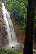 waterfall in the rain forest Chiang Mai,  Thailand
