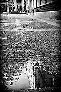 Cobblestone sidewalk, Paris