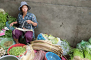 A vendor selling lotus stems and other vegetables at Phsar Kandal morning market in Phnom Penh, the capital city of Cambodia. A large variety of local products are available for sale in fresh markets all over Cambodia, all being sold on small individual stalls.
