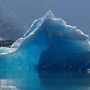 Sawyer Glacier in Tracy Arm of southeast Alaska.