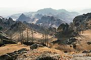 Landscape around the Khovsgol region, Northern Mongolia.