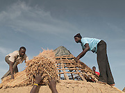 Local men thatch the roof of a newly built hut in the village of Rhumsiki, Cameroon