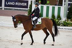 Davi Salazar Pessoa Mesquita, (BRA), Balthasar - Individual Test Grade Ib Para Dressage - Alltech FEI World Equestrian Games™ 2014 - Normandy, France.<br /> © Hippo Foto Team - Jon Stroud <br /> 25/06/14