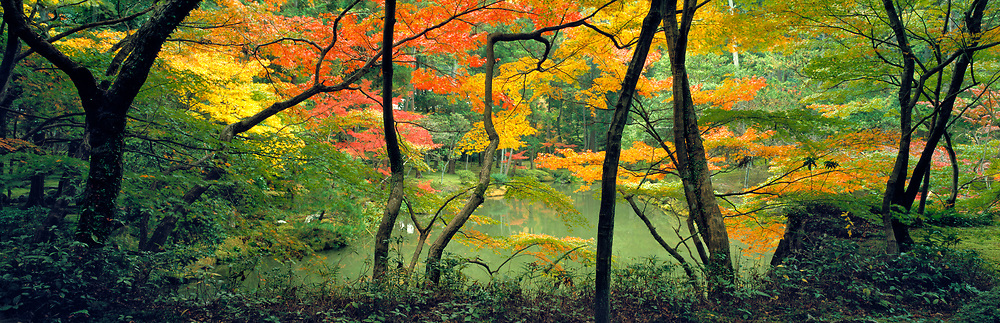 The Moss Garden, or Saihoji, in Kyoto is a popular site for Japan's visitors. ©Ric Ergenbright
