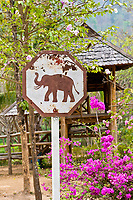 Elephant stop sign, Thai Elephant Conservation Center (National Elephant Institute), Lampang, near Chiang Mai, Northern Thailand