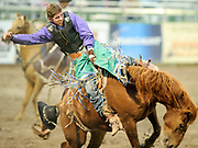 Chance Ames gets the high-mark ride of the season Saturday night on 101 Highway at the Jackson Hole Rodeo. With his hat flying, Ames scored a 91 to win the bareback event and the approval of the crowd.
