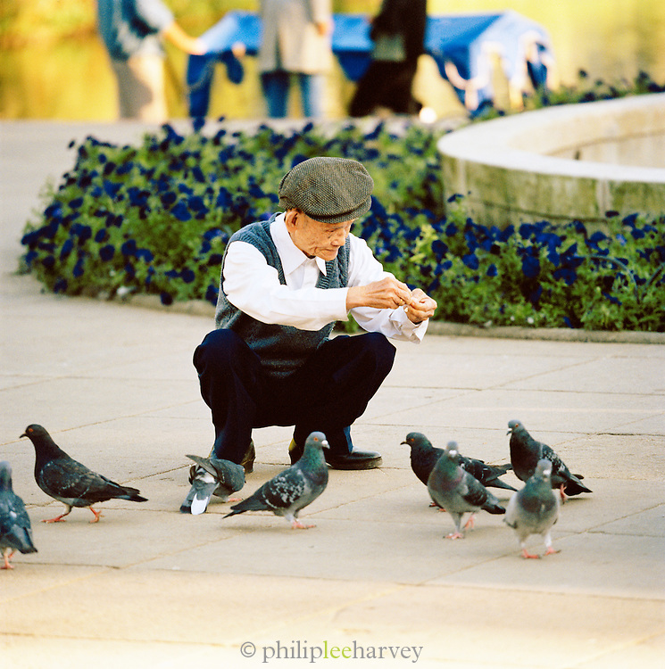 Man feeding pigeons in Warsaw, Poland