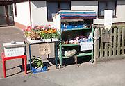 Roadside stall selling fresh produce Hollesley, Suffolk, England, UK