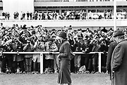Lady Diana Spencer surounded by photographers and members of the public while watching Prince Charles race at Sandown Park. 1981. © Copyright Photograph by Dafydd Jones 66 Stockwell Park Rd. London SW9 0DA Tel 020 7733 0108 www.dafjones.com