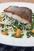 Grilled fish fillet on salad