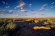 Barren landscape at Broken Hill, New South Wales, Australia