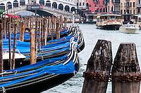 Italy, Venice. The Rialto Bridge over Canal Grande.