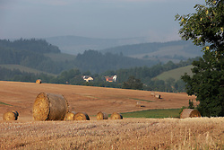 CZECH REPUBLIC VYSOCINA NEDVEZI 20AUG15 - Harvested field of wheat and bales of straw in the morning light near the village of Nedvezi, Vysocina, Czech Republic.<br /> <br /> <br /> <br /> jre/Photo by Jiri Rezac<br /> <br /> © Jiri Rezac 2015