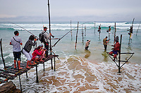 Sri Lanka, province du sud, plage de Weligama, pêcheurs sur échasses, touristes photographes // Sri Lanka, Southern Province, South Coast beach, Weligama beach, Stilt fishermen on the coast, photographers