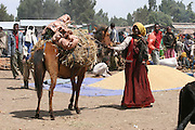 Africa, northern Ethiopia, Lalibela, The Market. People travel for days to come and trade goods at the market Transporting hey