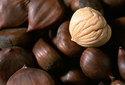 Close up selective focus photograph of chestnuts