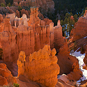 Bryce Canyon National Park in Southern Utah is distinctive due to geological structures called hoodoos, formed by wind, water and ice erosion of the river and lake bed sedimentary rocks. The intricate hoodoos, eroded from soft limestone, glow with warm shades of red, orange, pink, yellow and cream with the right light. This was taken from Sunset Point.