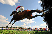 20 March 2010 : Jockey Jamey Price and Bold Turn lead the field over a hurdle during the sixth race. The pair finished 4th at the wire.