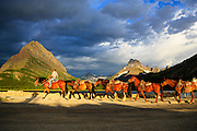 A tour rider brings a string of horses near Swiftcurrent Lake, Glacier National Park