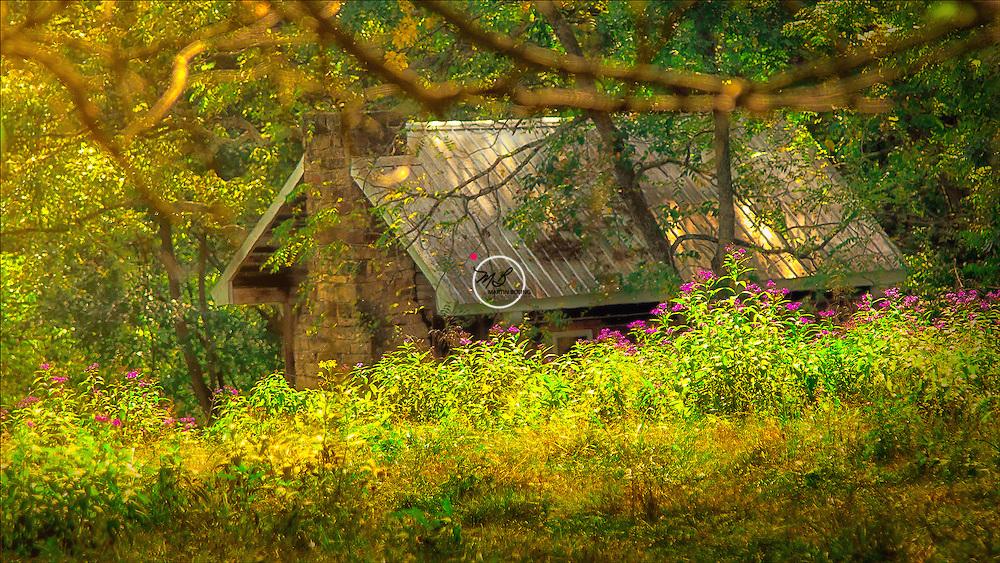 Ferguson Cabin & Ironweed