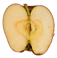 Crossection of apple