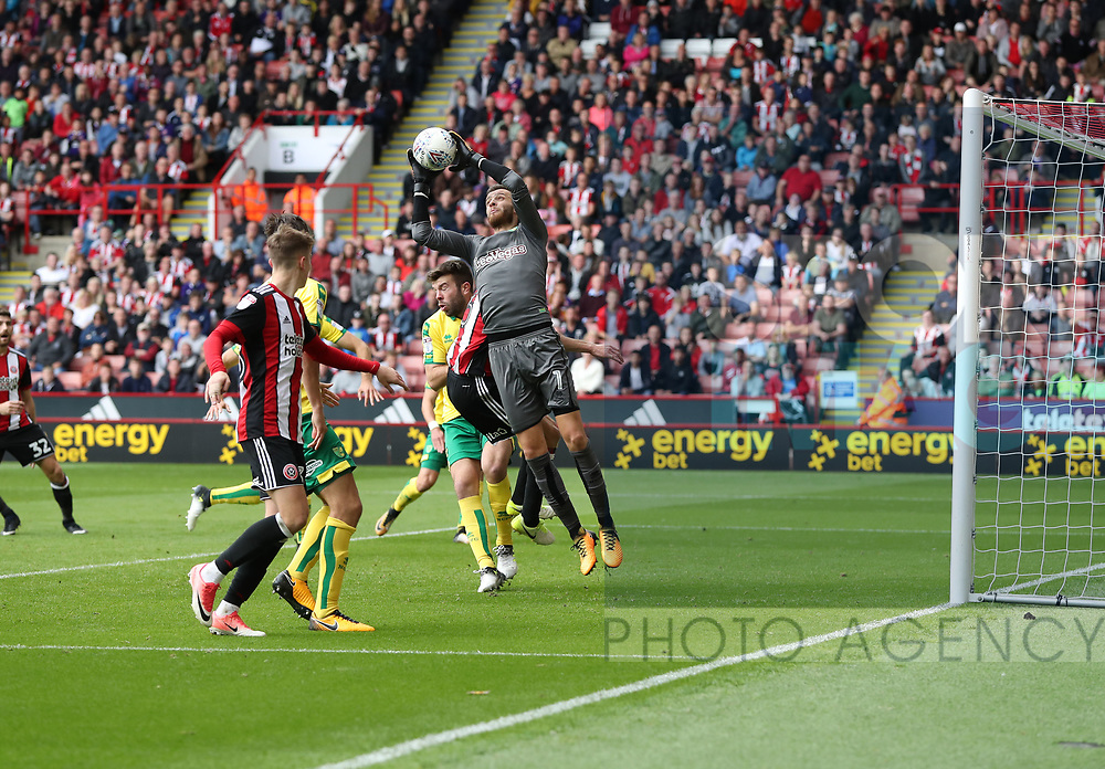 Angus Gunn of Norwich City in action during the Championship match at Bramall Lane Stadium, Sheffield. Picture date 16th September 2017. Picture credit should read: Jamie Tyerman/Sportimage