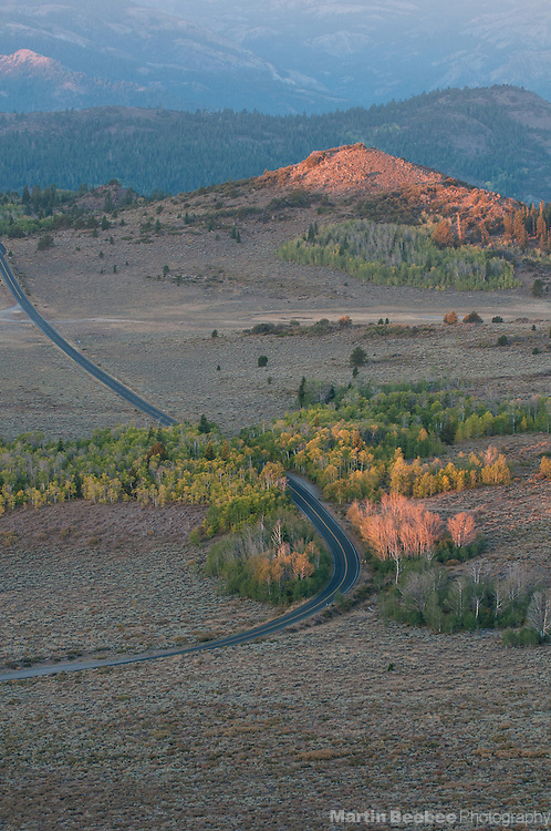 Highway 89 running through aspen forest at Monitor Pass, Toiyabe National Forest, California