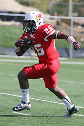 06 October 2012:  Marshaun Coprich during an NCAA football game between the Southern Illinois Salukis and the Illinois State Redbirds at Hancock Stadium in Normal IL
